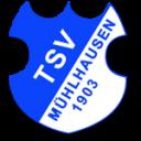 muehlhausen_wuerm_1377960935
